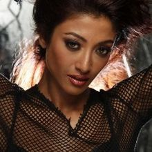 PAOLI DAM on ArtisteBooking